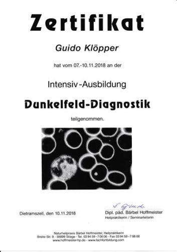 Zertifikat: Dunkelfeld-Diagnostik