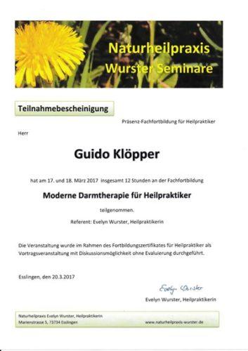 Zertifikat: Moderne Darmtherapie
