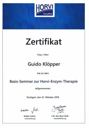 Zertifikat Horvi-Enzym-Therapie